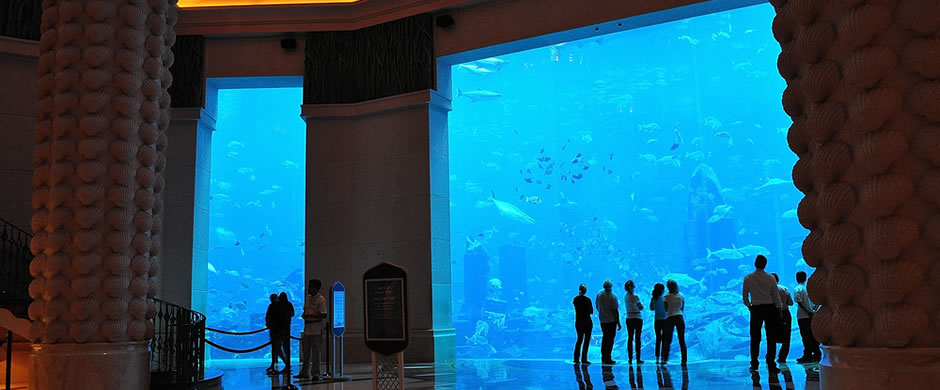 Atlantis The Palm, Dubai - Atlantis Travel